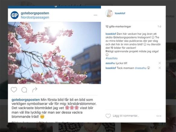 instagram-gp
