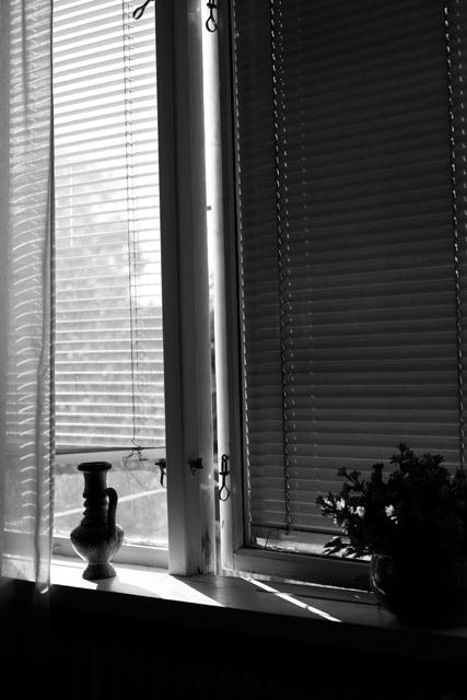 fönster-dAg