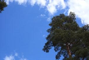 blå-himmel