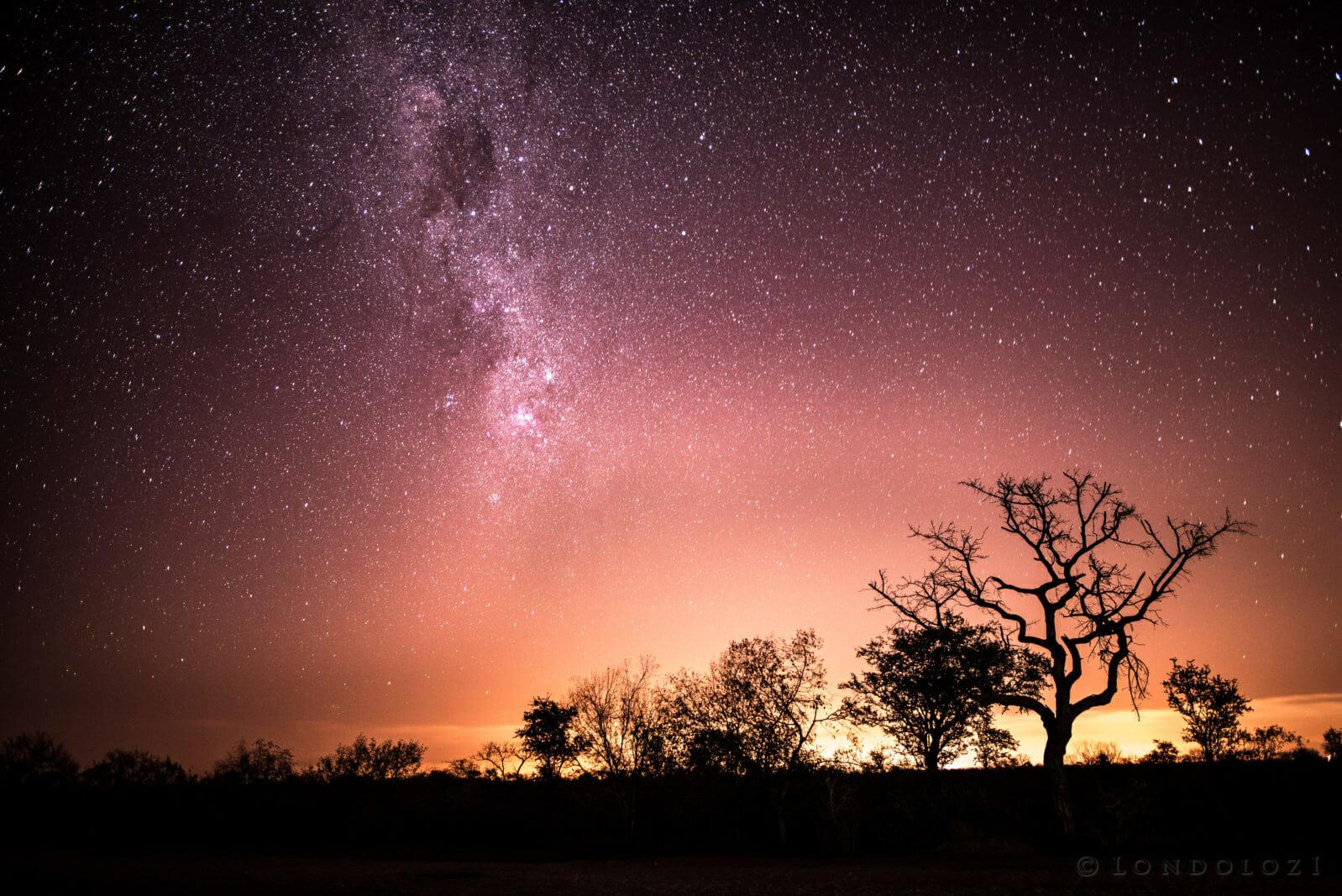 Constellation Gallery