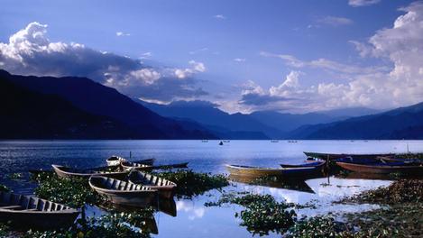 Boats, Phewa Tal, Pokhara