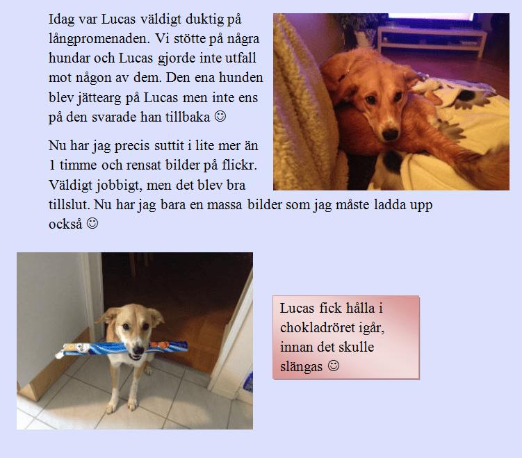 2014-01-04_2234