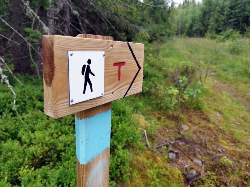 Skogsveien møter grusvei: Her er det en snuplass, og et skilt som peker retningen opp til Nordhue.