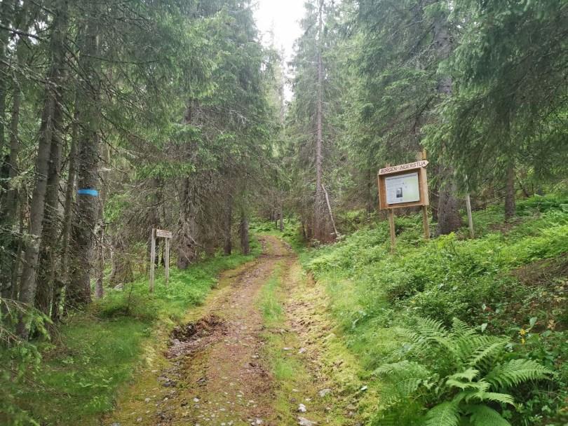 Nær toppen kommer skiltingen til Helge Væringsaasens promenadstier.