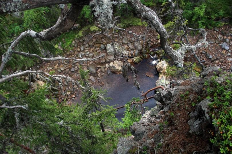 Langt ned: Fra kanten av juvet er det langt ned i bunnen. Selv om stiene rundt Korpreiret er tilrettelagt er det ingen sikring ut mot canyonen. Dette er vill natur.