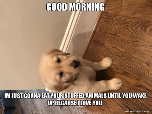 GOOD MORNING IM JUST GONNA EAT YOUR STUFFED ANIMALS UNTIL YOU WAKE UP BECAUSE I LOVE YOU - Henry | Make a Meme