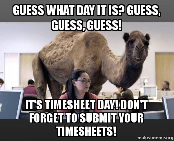 funny timesheets due reminder