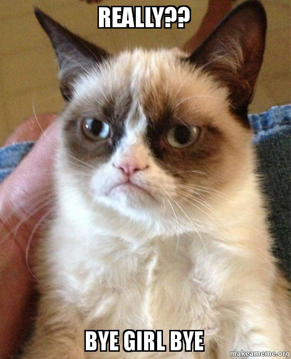 Really Bye Girl Bye Grumpy Cat Make A Meme