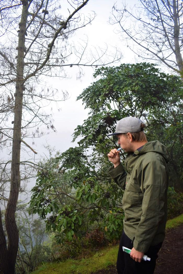 david borstar tänderna på skogsstigen vid Huka falls.