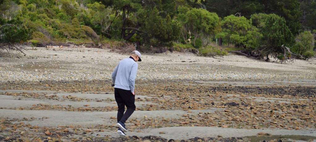 Camping vid havet och cafémys under färden mot Abel Tasman!