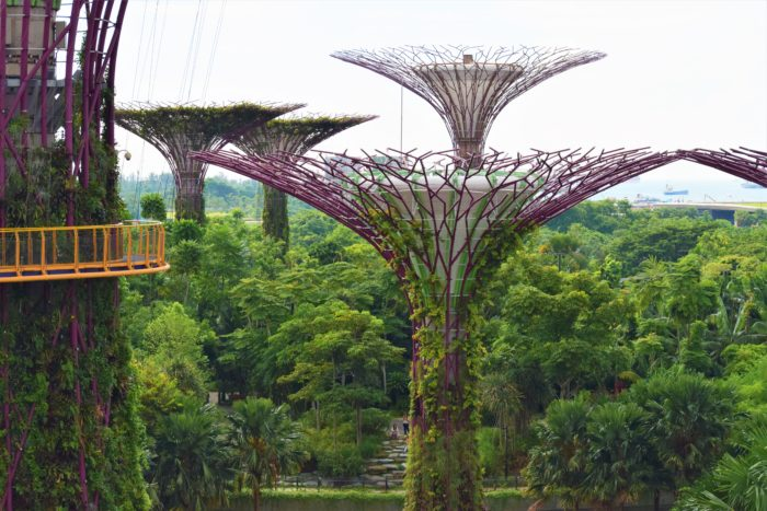 gå skywalk gardens by the bay