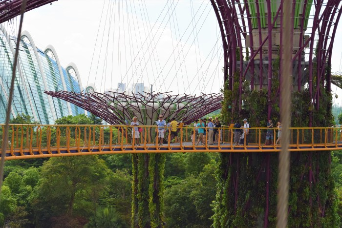 skywalk gardens by the bay