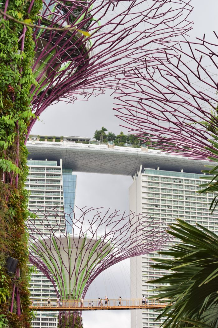 marina bay sands och gardens by the bay