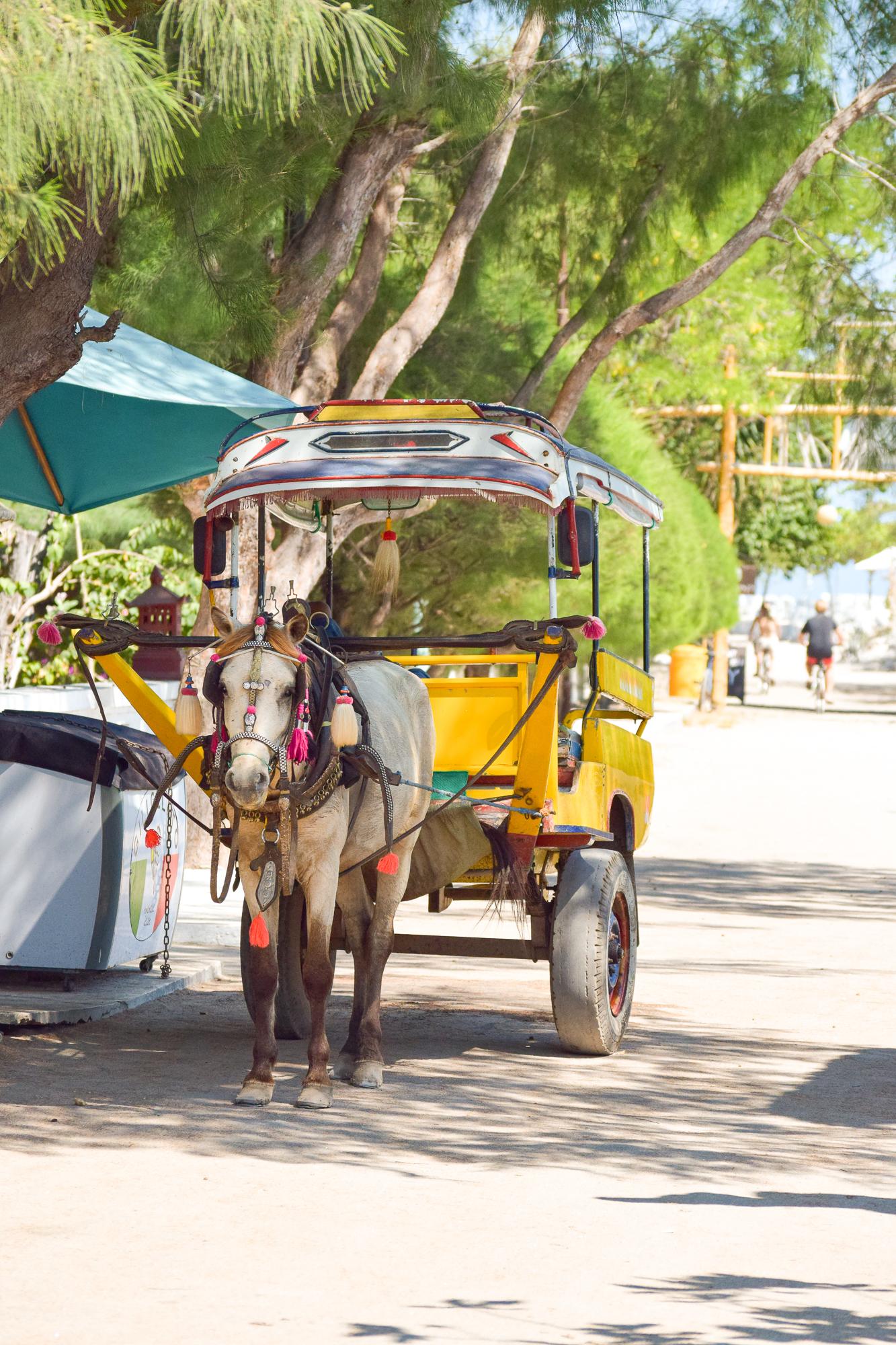 häst och vagn står stilla vid vägen.