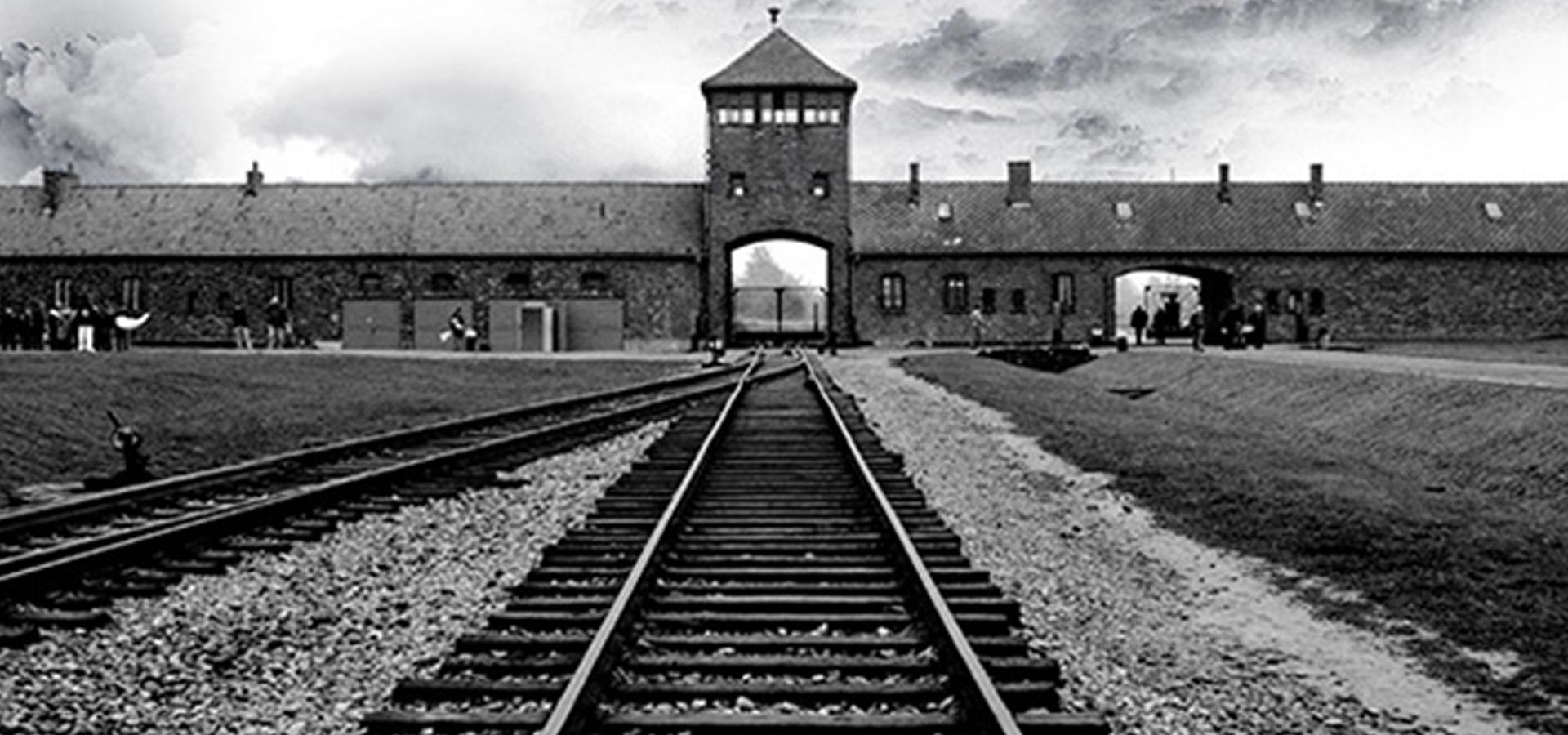 """Résultat de recherche d'images pour """"auschwitz birkenau"""""""