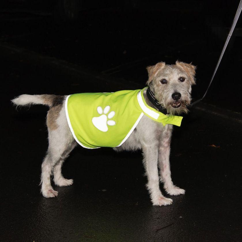 Gilet de sécurité Safety-Dog pour chien - taille L : longueur de dos 40 cm