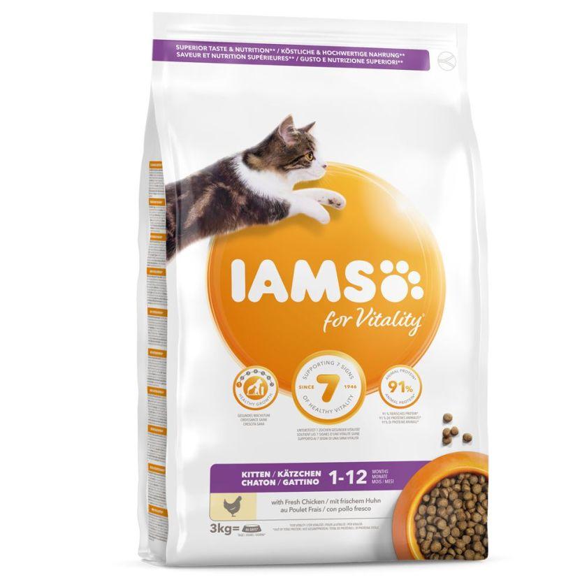 3 kg Health Kitten & Junior IAMS Pro Active pour chaton