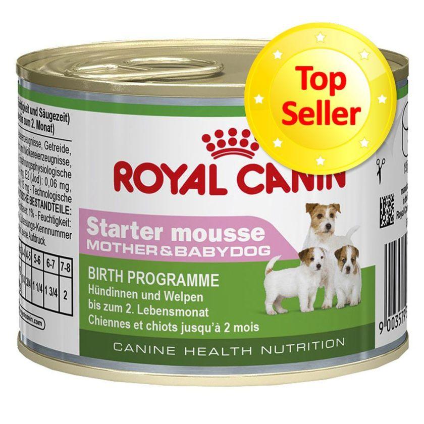 Royal Canin Starter Mousse Mother & Babydog - maxi lot % : 48 x 195 g