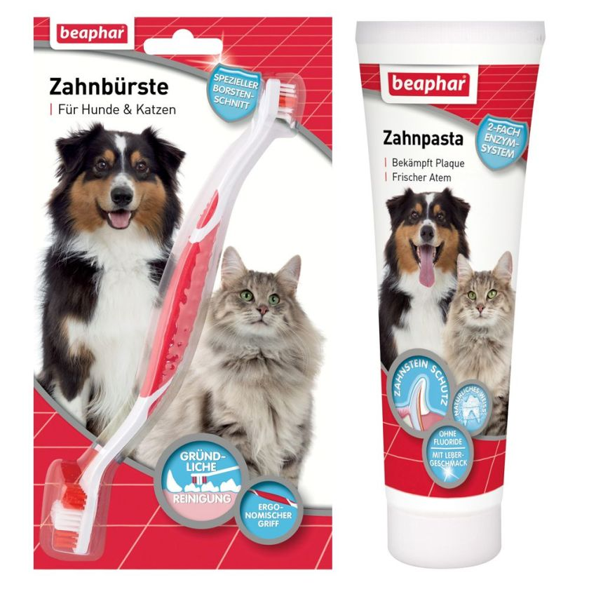 Brosse à dent + dentifrice pour chien et chat - Brosse à dent + 100 g de dentifrice