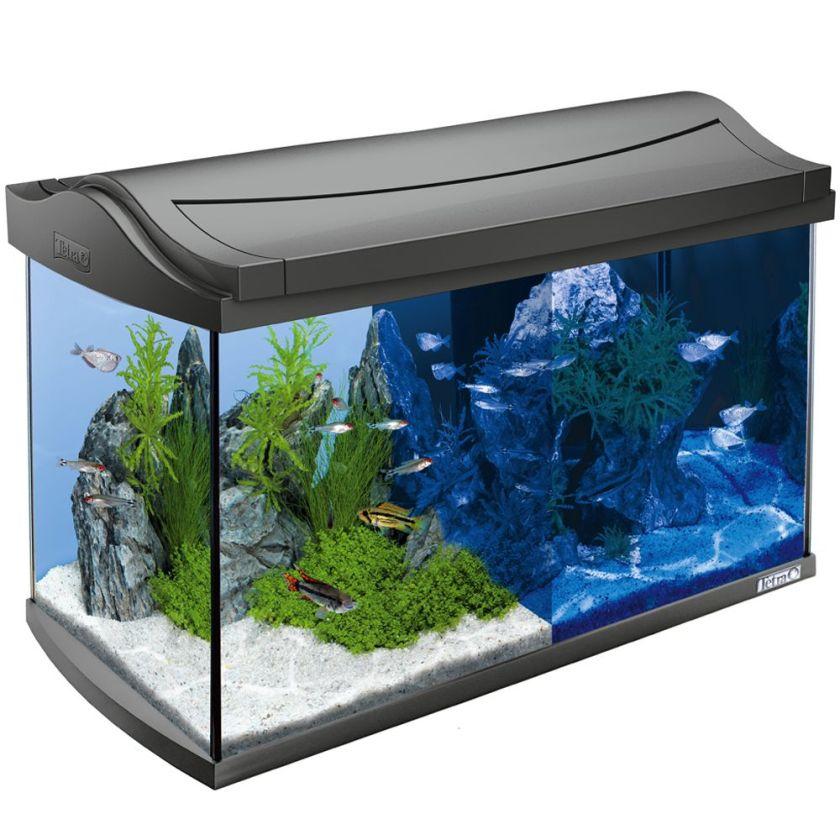 Tetra AquaArt LED 60 L Kit complet Aquarium - anthracite