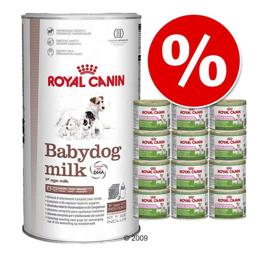Lot Royal Canin Babydog milk 2kg + Starter Mousse 12 x 195g - lot mixte