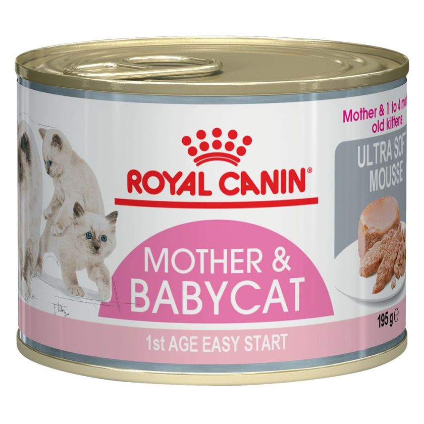 6x195 g Mother & Babycat Mousse ultra tendre Royal Canin Nourriture pour chaton