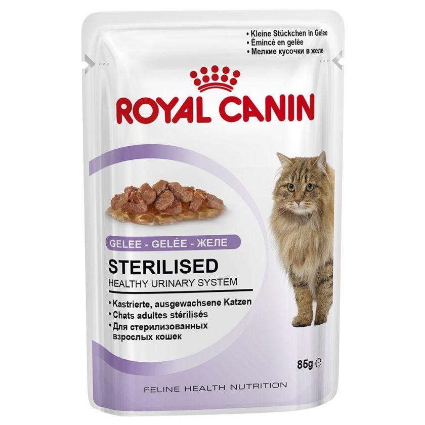 Royal Canin Sterilised en gelée pour chat - 24 x 85 g