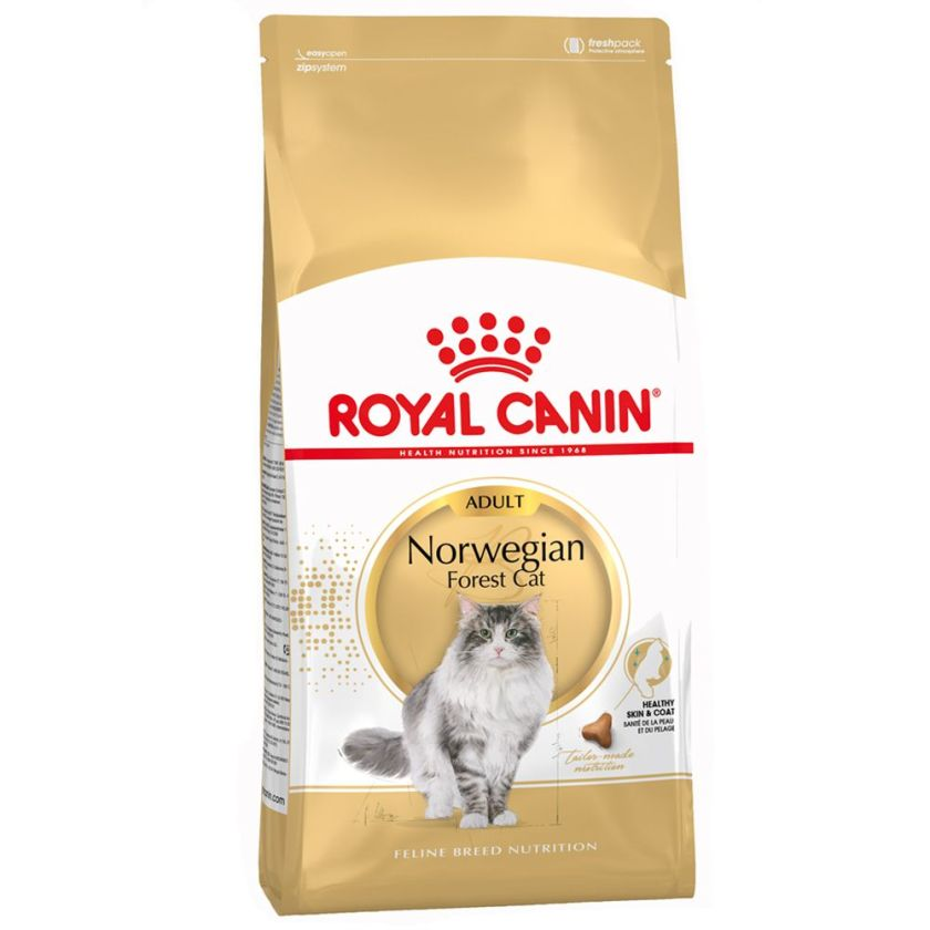 2x10kg Norvégien Royal Canin Croquettes pour chat Norwegian Forest Cat