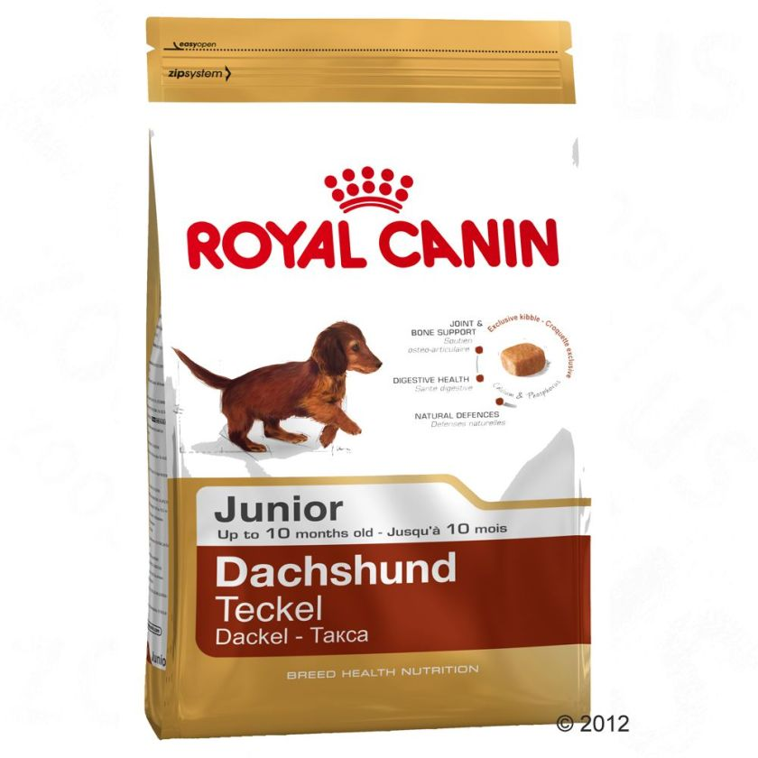 Royal Canin Breed Dachshund Junior pour chiot - 3 x 1,5 kg