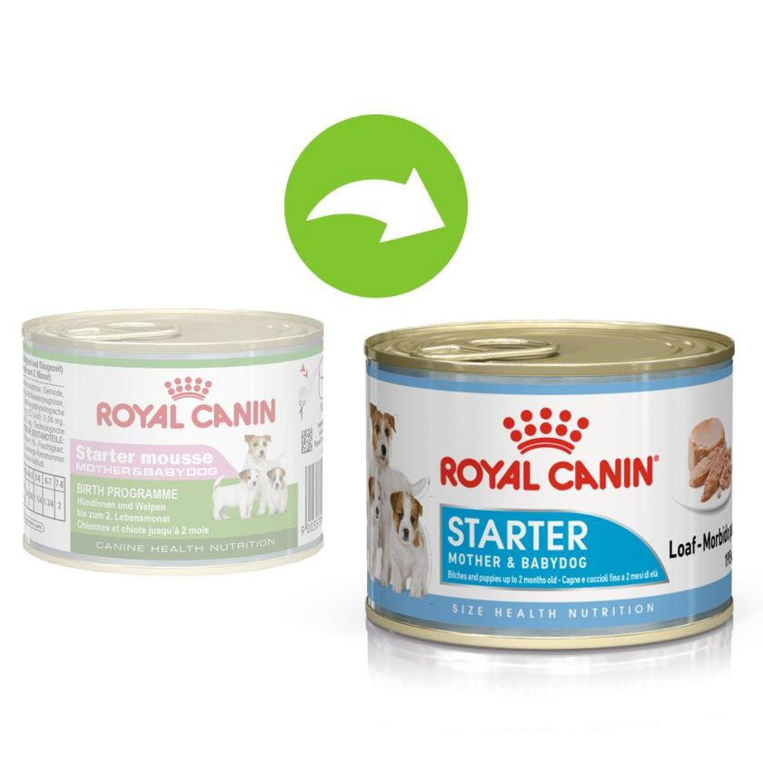 Royal Canin Starter Mousse Mother & Babydog pour chien - 12 x 195 g