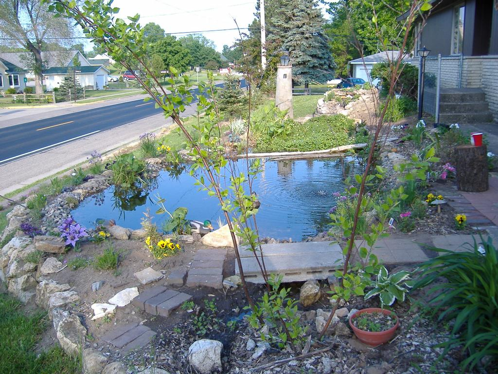 FIREBALL COMPUTER AND FISH PONDS - Pepin WI 54759   715 ... on Front Yard Pond  id=87808