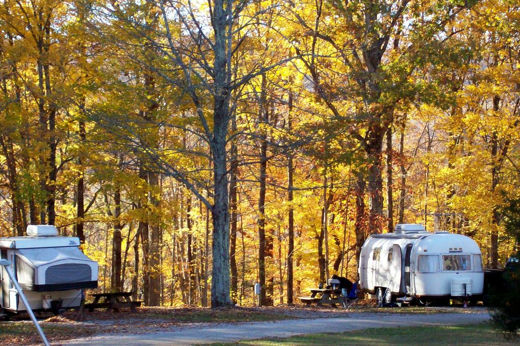Autumn camping, is camping at the best time of year.