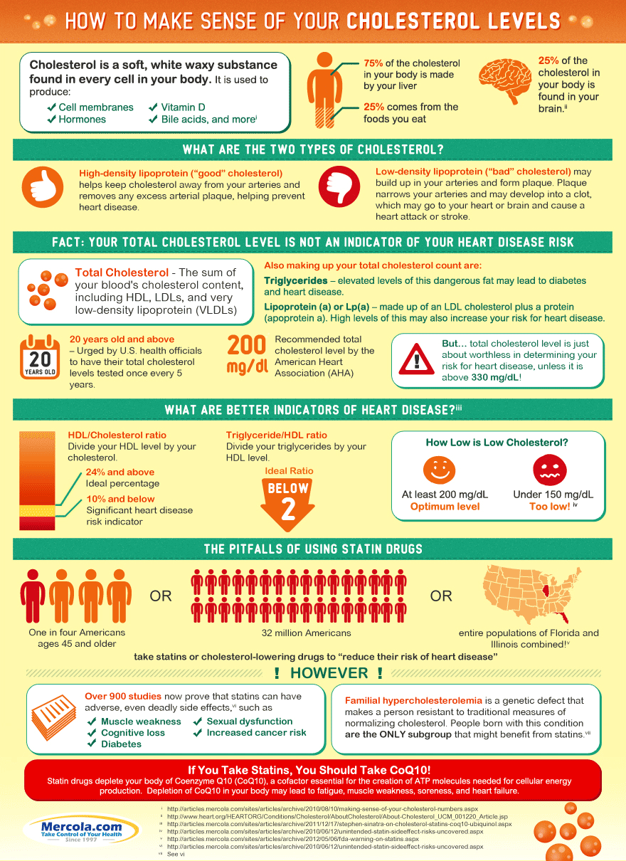 cholesterol levels infographic