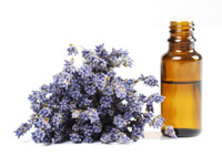 Ultimate Guide to Herbal Oils Lavender-oil