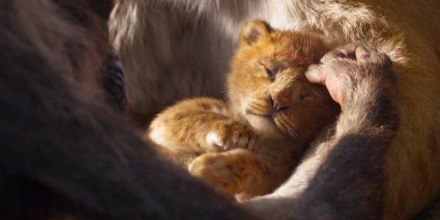 Resultado de imagen para trailer rey leon live action