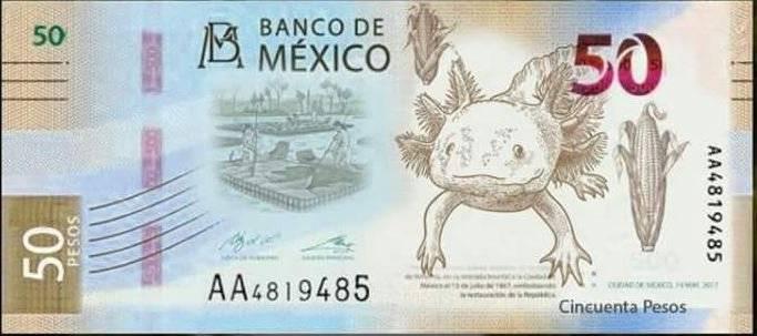 México Ajolotes Billetes