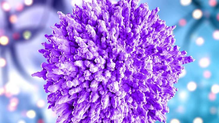 Coronavirus: enfermedad tendría dos cepas y la mayoría de los contagiados sufre la más grave