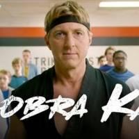 Cobra Kai: este es el oscuro pasado detrás del nombre del Dojo y de la serie