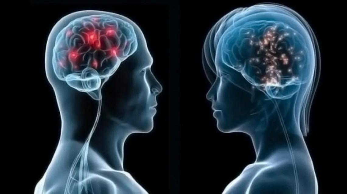 Los cerebros de las mujeres lucen tres años más jóvenes que los de los hombres