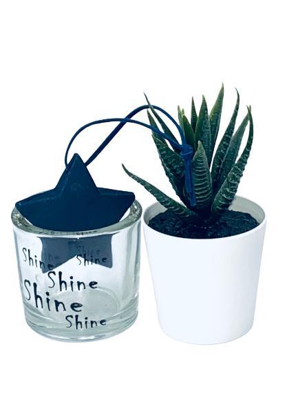 Presentpåse - Växt, ljuslykta i glas, lakrits, stjärna