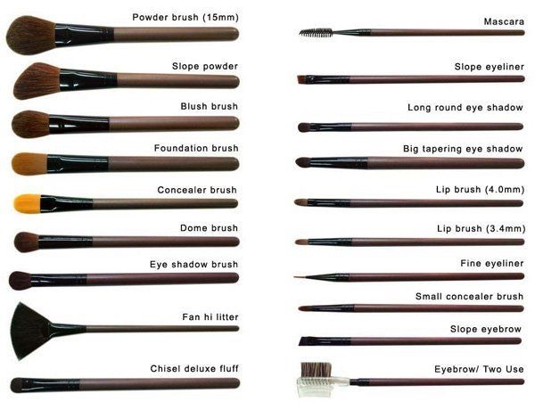 Makeup Brushes And Its Uses Saubhaya