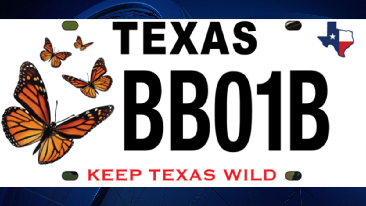 Texas to Launch Butterfly License Plate, Funds Go to Conservation