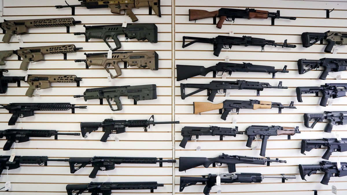 GOP State Lawmakers Seek to Nullify Federal Gun Limits 1
