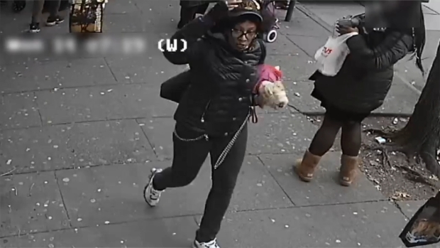 [NY] Bus Rider Slashes 2 Women for Petting Her Dog, Cops Say