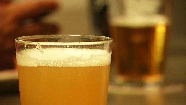 Estudiantes universitarios se preparan para carreras en la elaboración de la cerveza