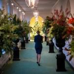 Photos White House Reveals Christmas Decorations Nbc4 Washington