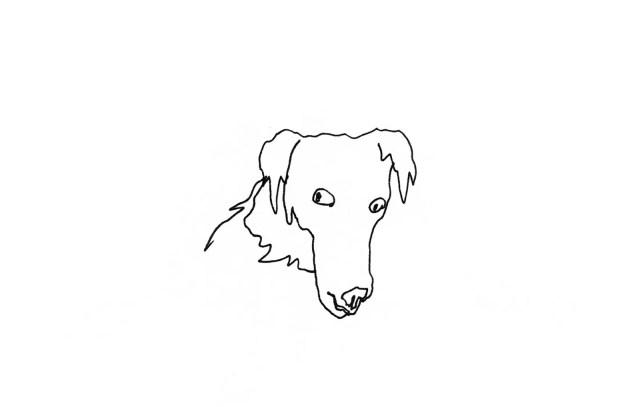 Dog giving a sideeye glance.