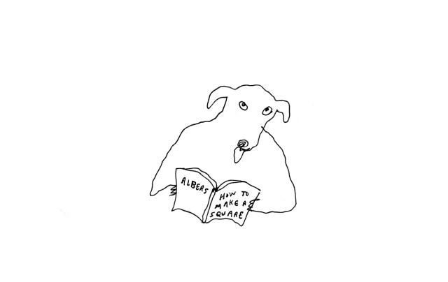 Dog reading book titled How To Make A Square.