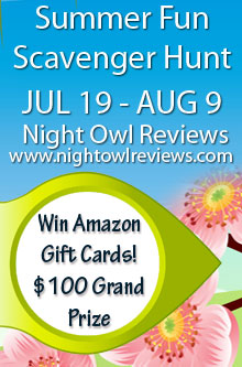 Night Owl Reviews Web Hunt
