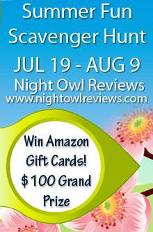 Night Owl Reviews Web Hunt